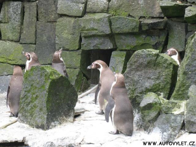 Zoo Liberec 9