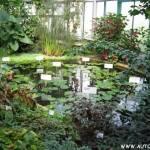 Botanická zahrada Liberec 1