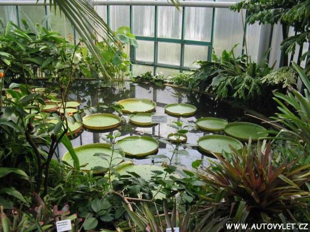 Botanická zahrada Liberec 3