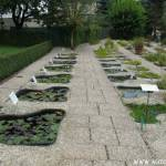 Botanická zahrada Liberec 8