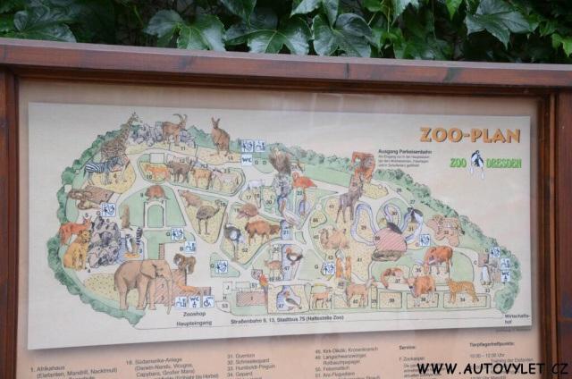 Zoo Drážďany 39