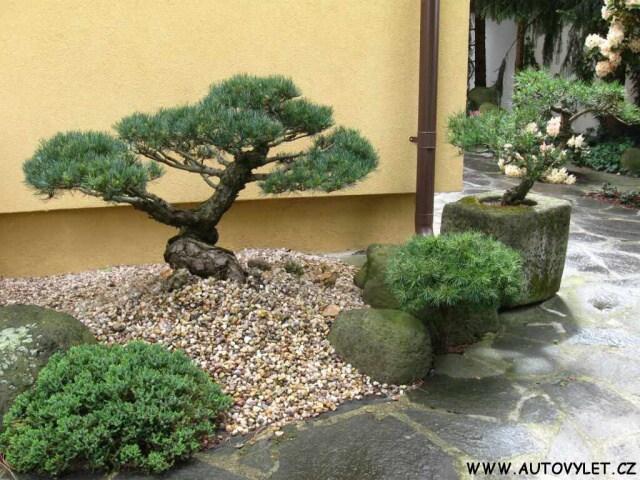 Japonská zahrada Písty 4