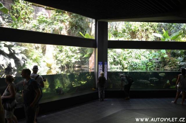 Aquarium Zoo Berlin 17