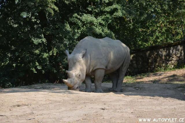 Zoo Lešná Zlín 27