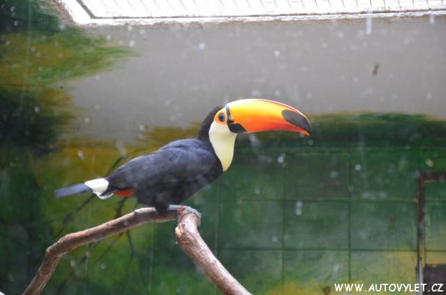 Zoo Hodonín 27