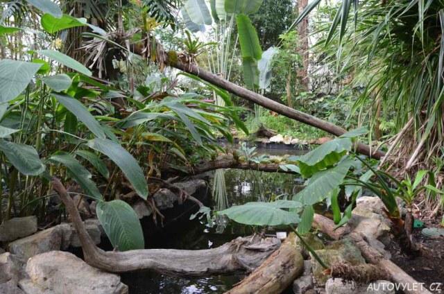 Botanická zahrada Teplice 40