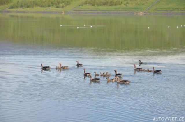 Jezero Milada Ústí Chabařovice 11