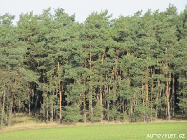 Les Trávčice