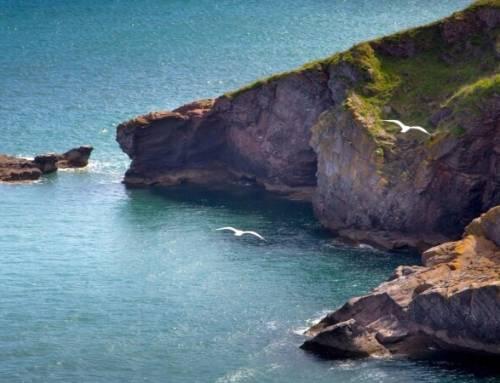 Krásy jižní Anglie – zátoka Torbay