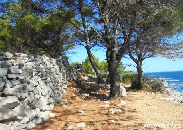 Do Chorvatska se psem - cesta na pláž