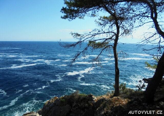 Do Chorvatska se psem - moře