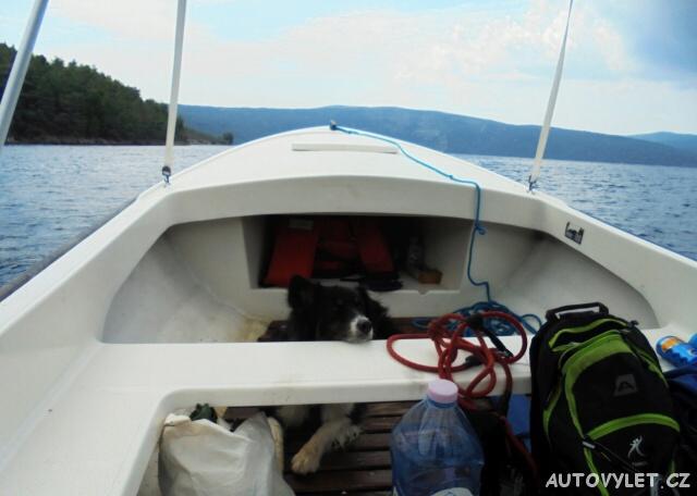 Do Chorvatska se psem - pes námořník