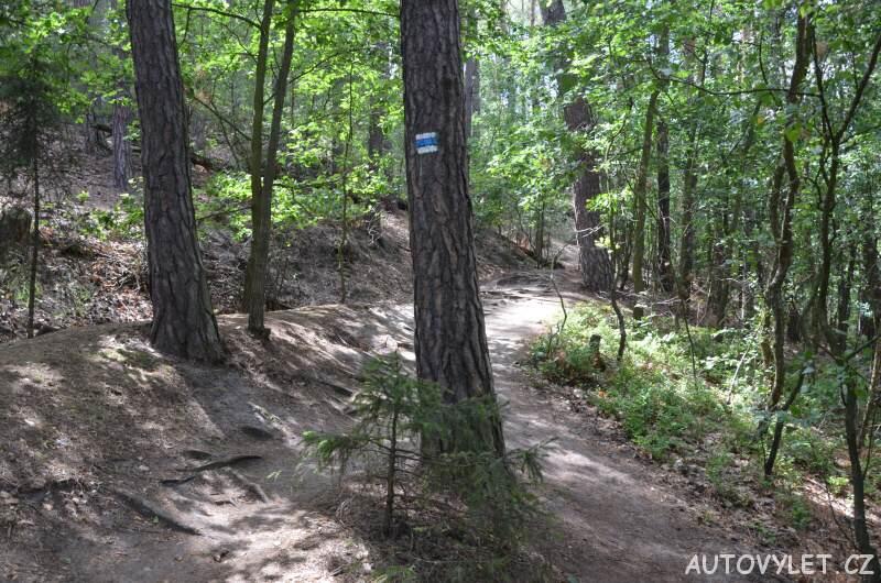 Cesta lesem k Čertovým hlavám