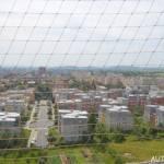 Výhled z rozhledna Vodárna v Kolíně