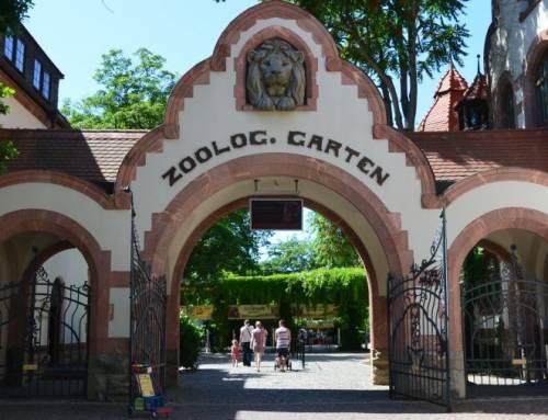Zoo Lipsko – jedna z nejhezčích zoologických zahrad v Evropě