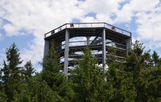 Rozhledna Stezka korunami stromů - Lipno nad Vltavou