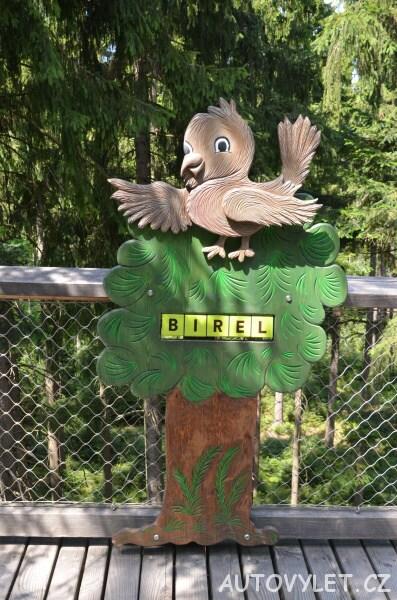 Stezka korunami stromů Lipno - ptáček Birel