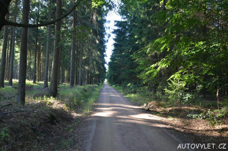 Trasa k rozhledně Oberbärenburg v Německu