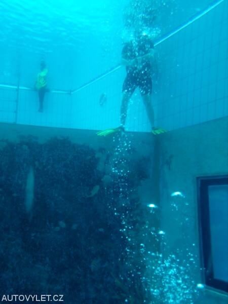 Aquapalace Praha Čestlice - potápěčský bazén
