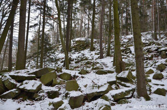 Cesta lesem u Lipnice nad Sázavou