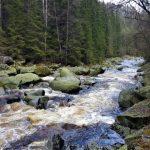 Výlet kolem řeky Vydry