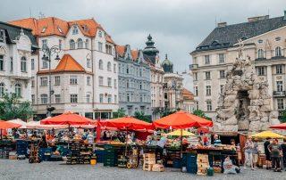 Zelný trh Brno