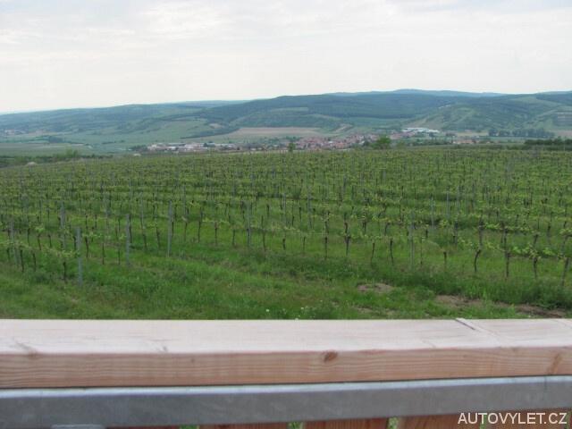 Stezka nad vinohrady - rozhledna Kobylí 3