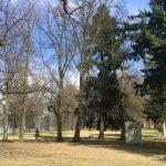 Třešť - zámecký park