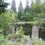 Jezero Laka - Šumava 3
