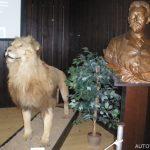 Africké muzeum Dr. Emila Holuba 2