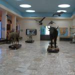 Africké muzeum Dr. Emila Holuba 4
