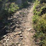 Ideální trasa pro horské kolo