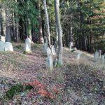 Židovský hřbitov Rovná u Sokolova