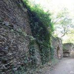 Zřícenina hradu Nový Hrádek u Lukova 4