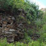 Templštejn - zřícenina hradu na Vysočině 4
