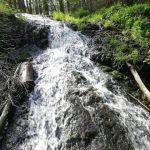 Žandov - Bobří soutěskou k vodopádům 2