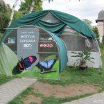Motýlí zahrada v Zoo Bojnice