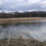Písecké rybníky