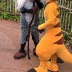 Postavičky z filmu Lví král v Disneylandu