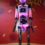 Robot v Iqlandii