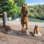 Sochy medvědů