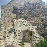 Zřícenina hradu Týřov 2