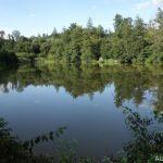 Zboženský rybník