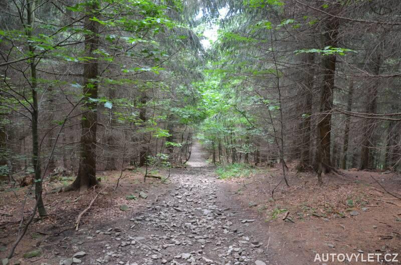 Lesem z Radhoště do Trojanovic