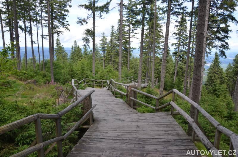 Schody v lese pod Boubínem