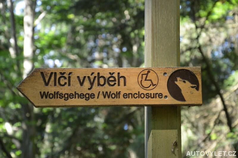 Trasa k vlčímu výběhu v Srní na Šumavě