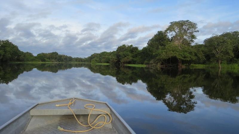 Amazonský prales - Amazonka