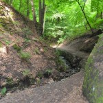 Procházka přes Bertino údolí až na Erbenovu vyhlídku