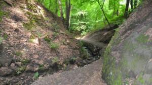 bertino údolí erbenova vyhlídka