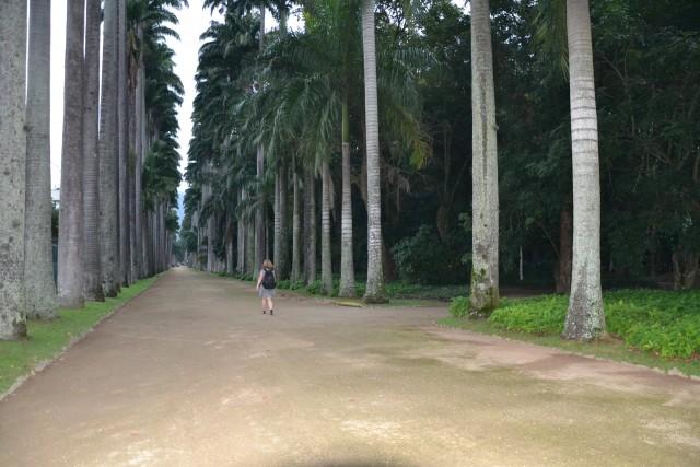 botanická zahrada brazílie